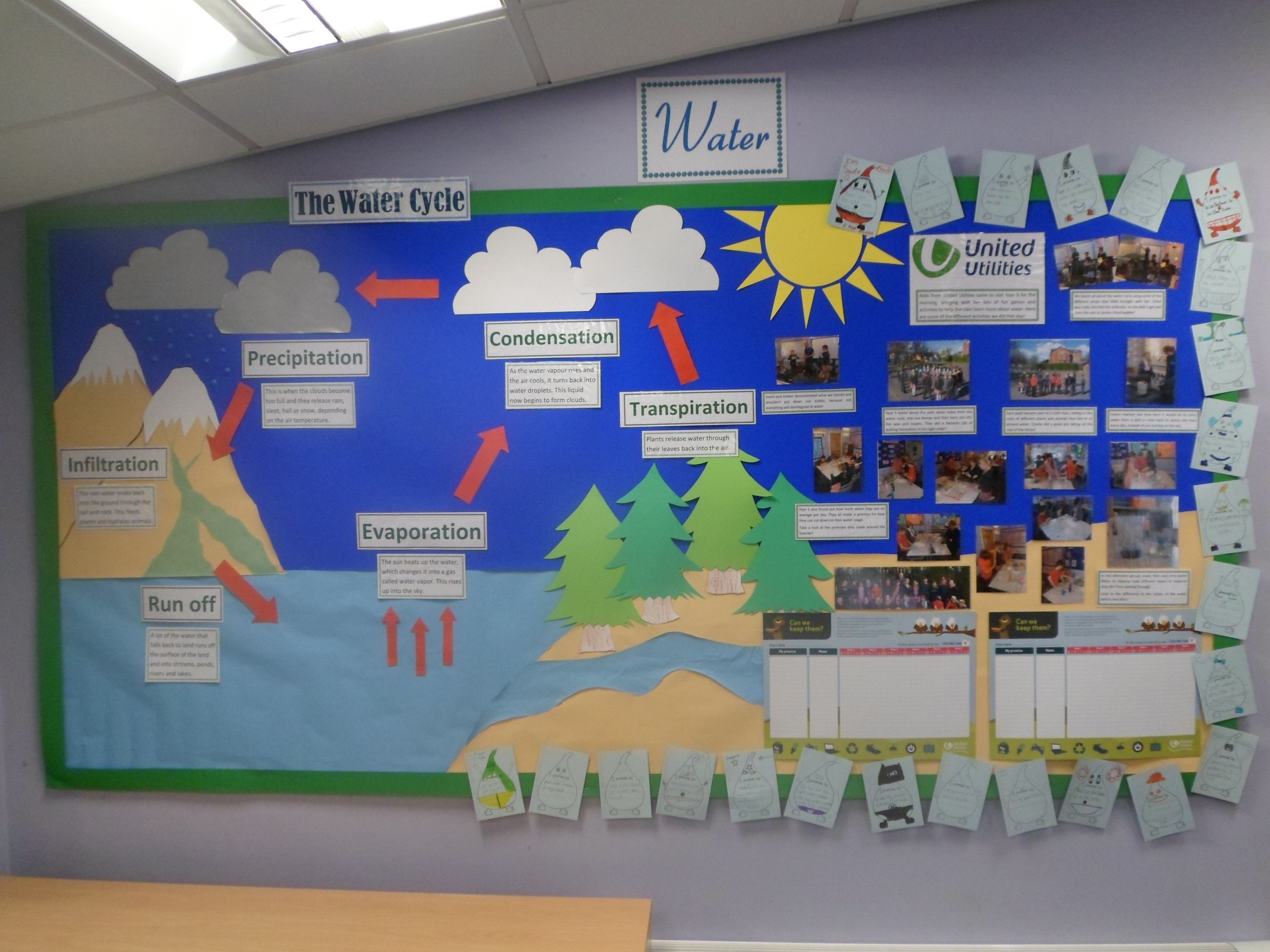 Water Cycle Display Created This With Some Of My Year 5