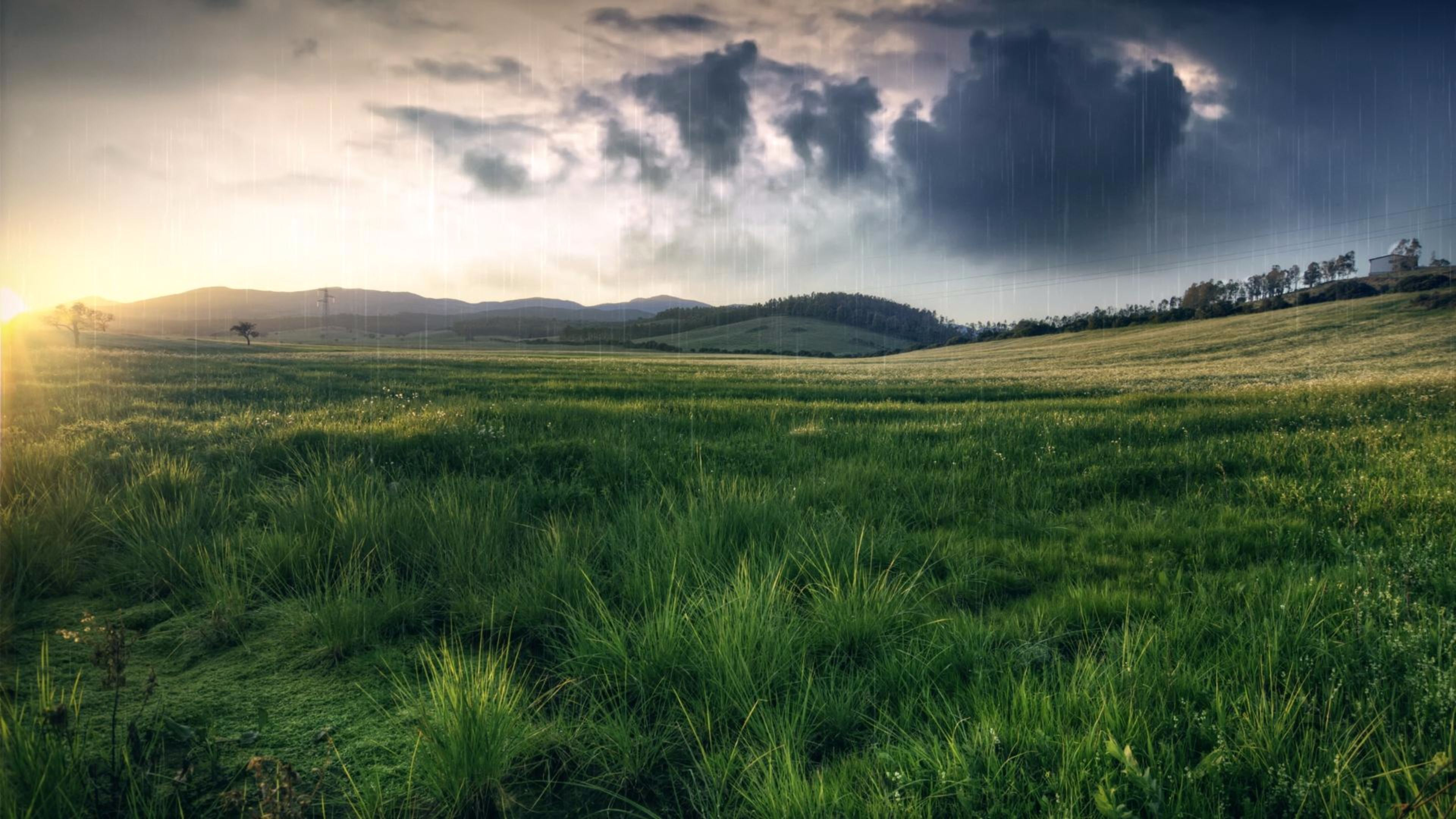 Spring Rain Wallpaper 1080p Free Download Scenery Wallpaper Spring Scenery Landscape Wallpaper
