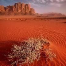 Wadi Rum, Jordan flickr by Jarrod Castaing