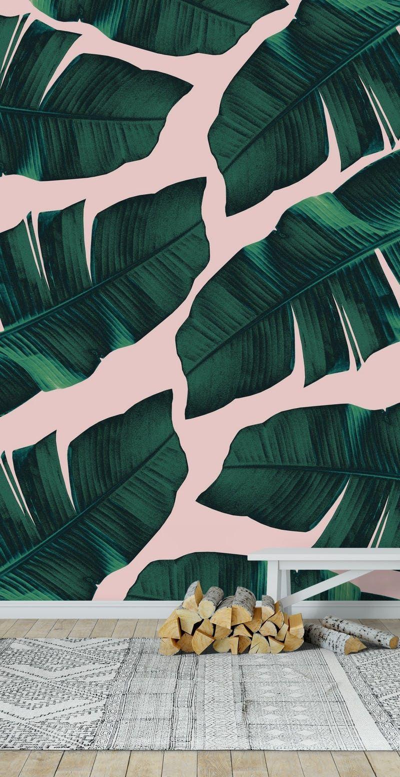 Blush Banana Leaves 2 Wallpaper From Happywall Com Banana Leaf Plant Wallpaper Banana Leaf Wallpaper
