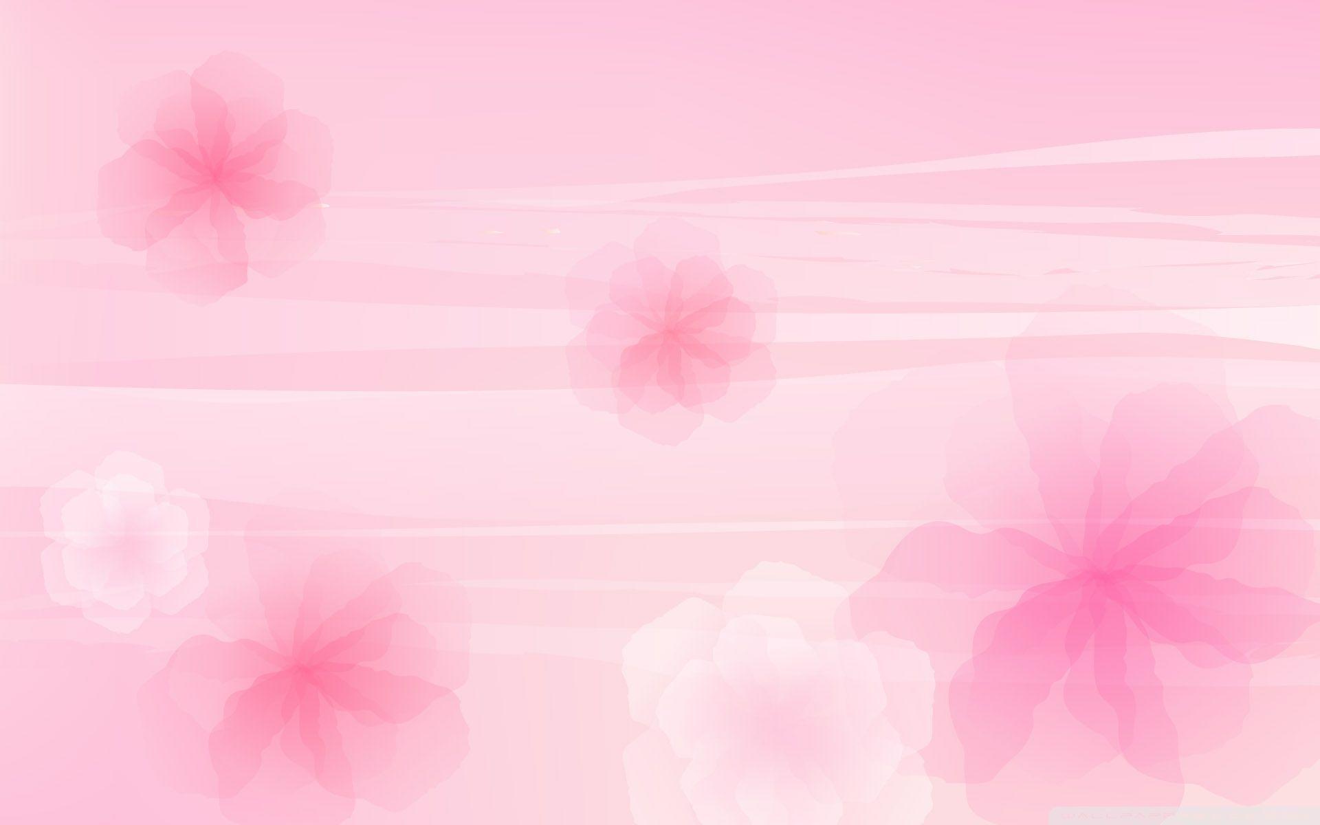 Pink Background Designs WallPaper HD
