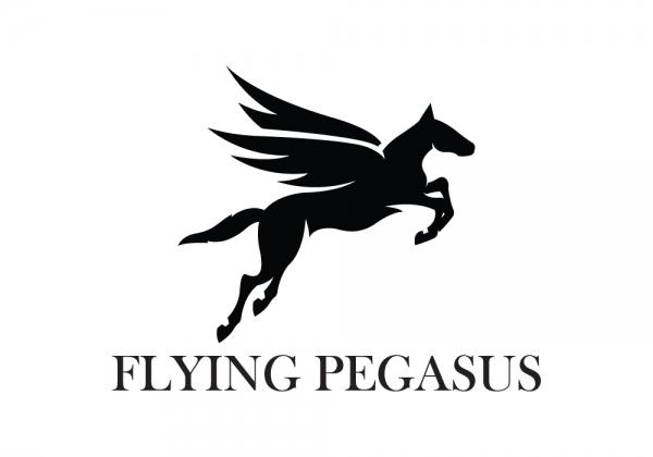Flying Pegasus Pegasus Logo Logo Design Premium Logo