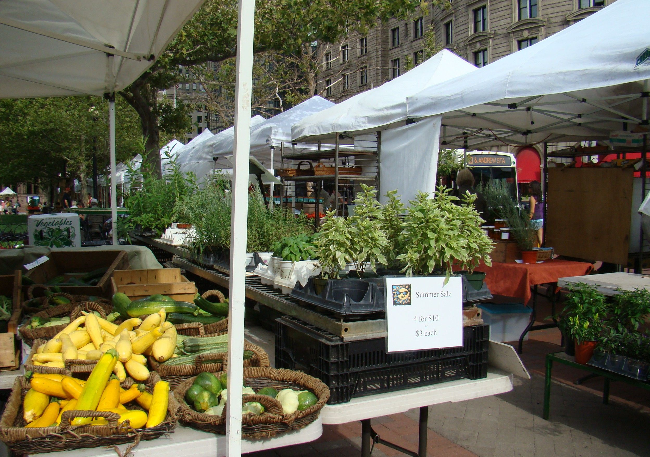 Boston farmers market local food farmers market farmer