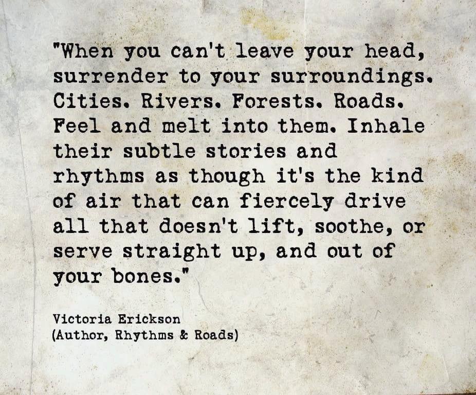 Surrender To Your Surroundings Victoria Erickson Instagram