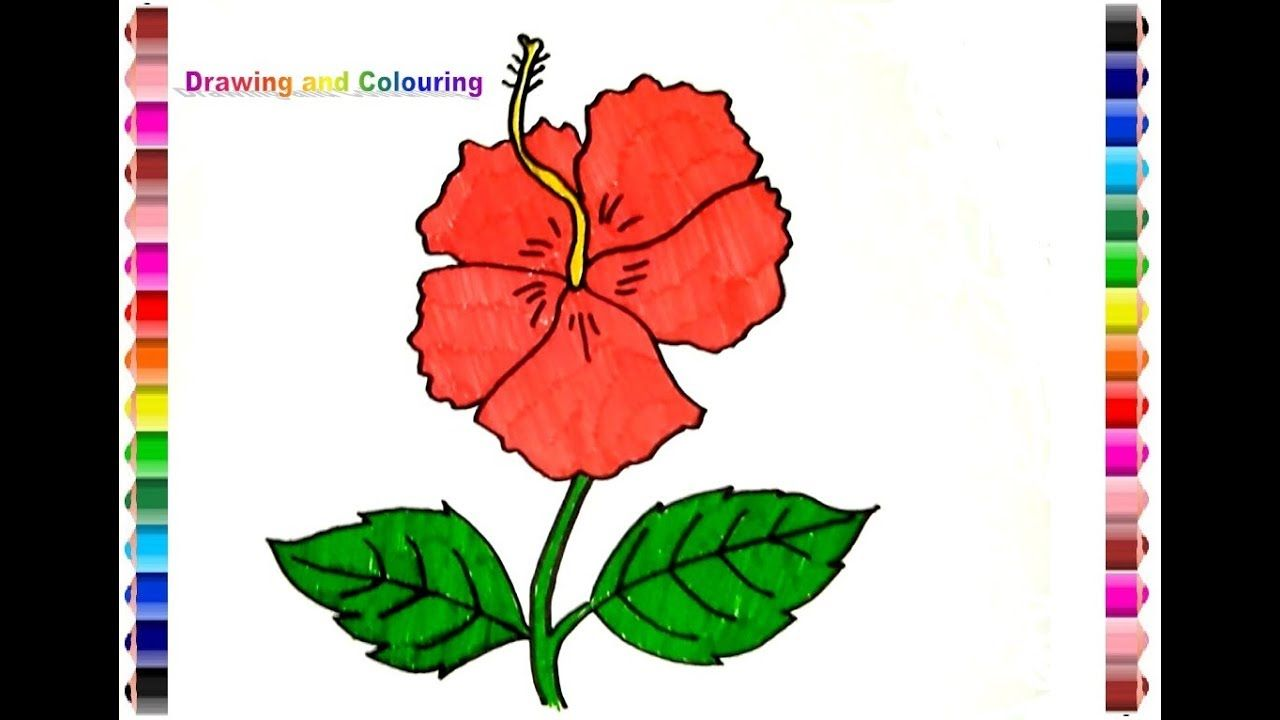 Gambar Bunga Sepatu Untuk Kolase Di 2020 Bunga Gambar Kolase
