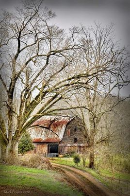 .Old barns great photo spot. Love the trees