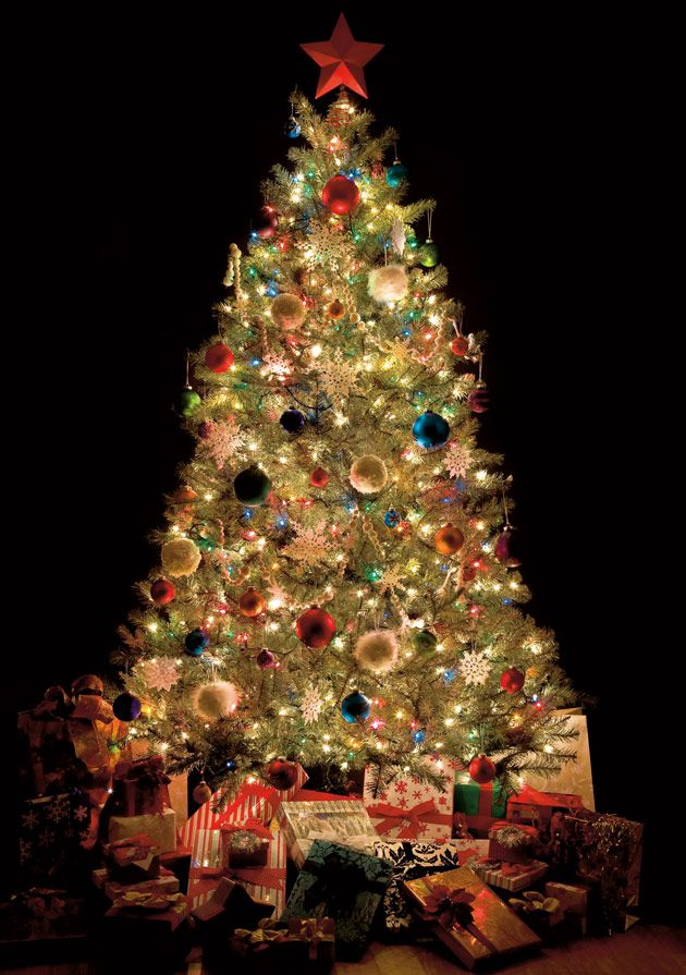 Colourful Tree | Charity Christmas Card
