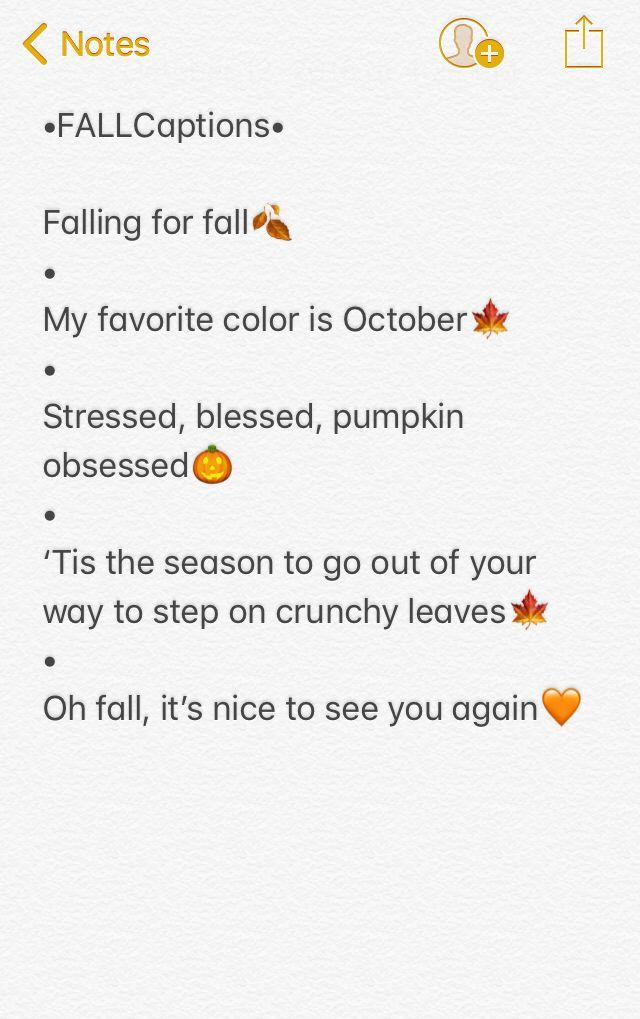 5 cute fall captions🍁🎃🍂 | Insta captions | Instagram ...