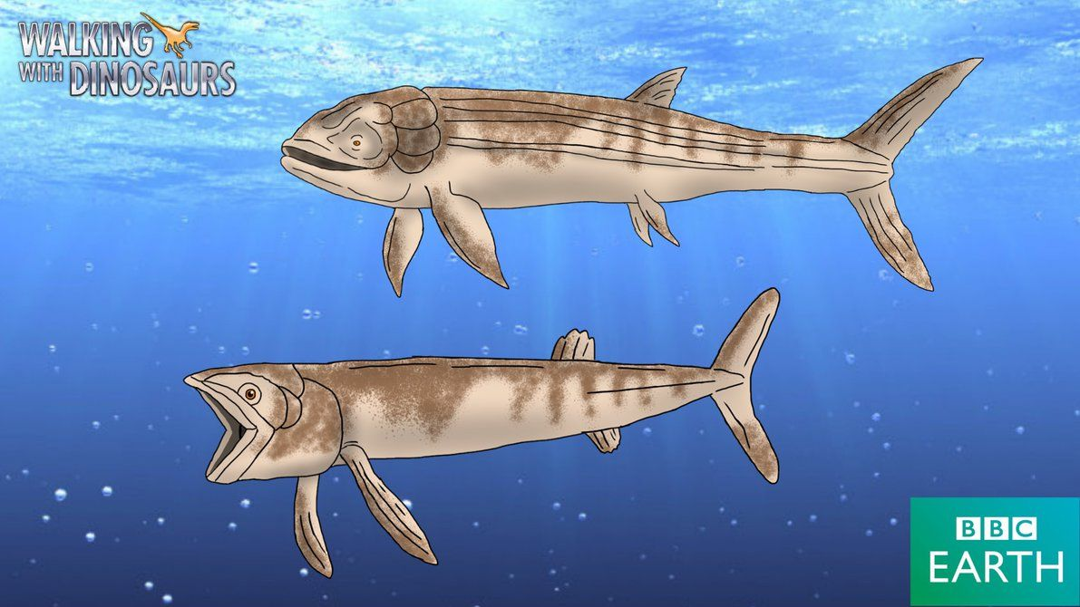 Leedsichthys Problematicus Named By Arthur Smith Woodward 1889 Diet Filter Feeder Plankton Walking With Dinosaurs Prehistoric Dinosaurs Prehistoric Wildlife