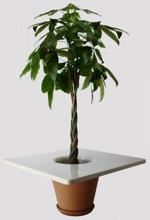 IntégréeDéco D'appoint Plante Végétal Table Avec mwv80NOn