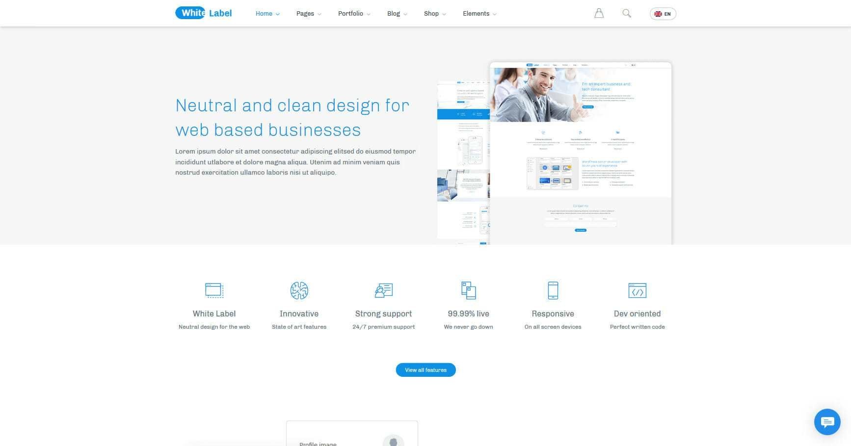 White label is a clean and neutral WordPress theme that is great for ...