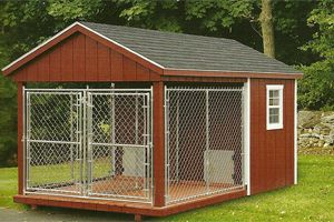 Nice indoor outdoor design for the dogs 8x14 double for Indoor outdoor dog kennel design