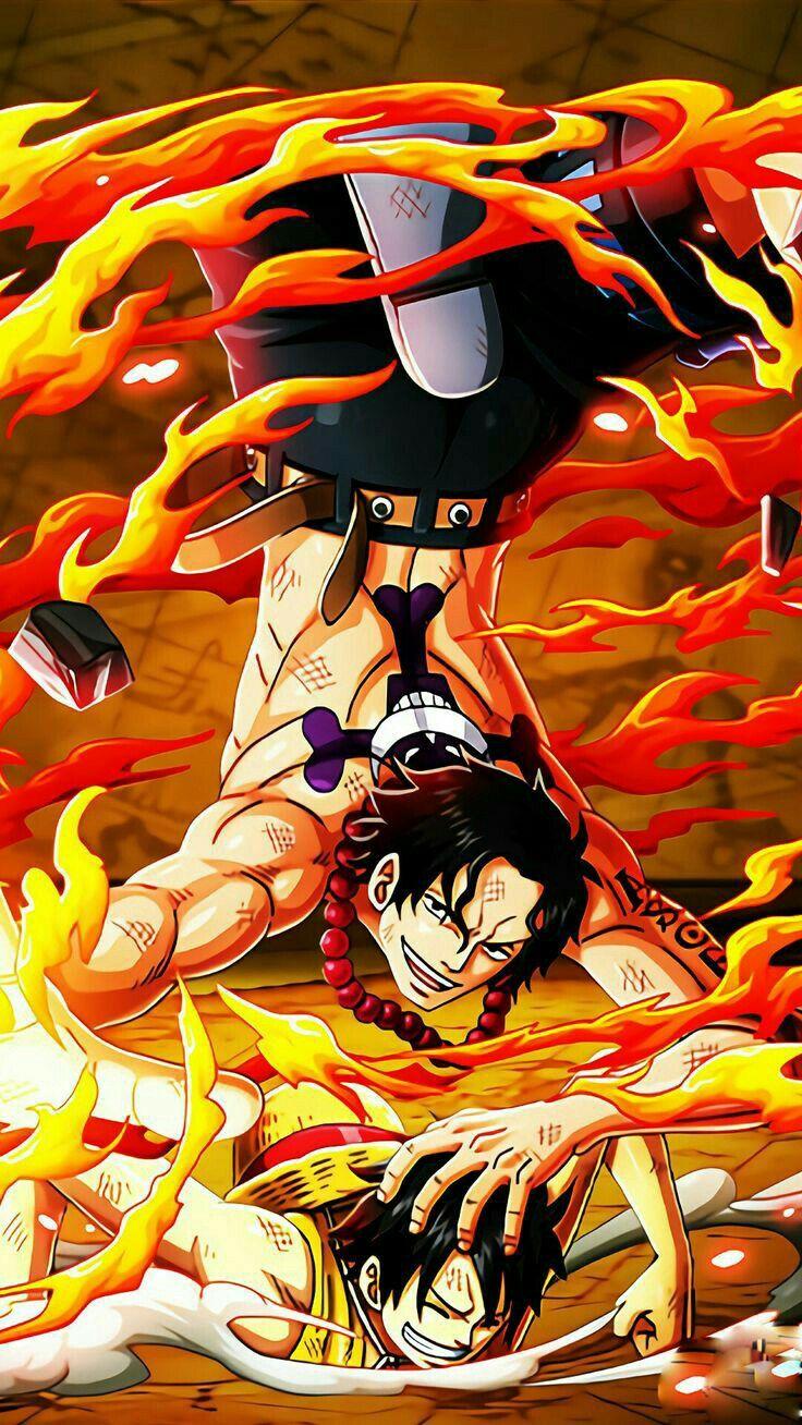 Ghim của lamduong nhatanh trên One Piece (Có hình ảnh
