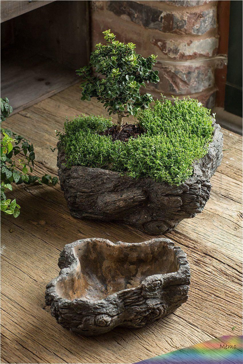 This Pin Was Discovered By Jantien Van Erve Discover And Save Your Own Pins On Pinterest Pflanzen Pflanzideen Garten Deko