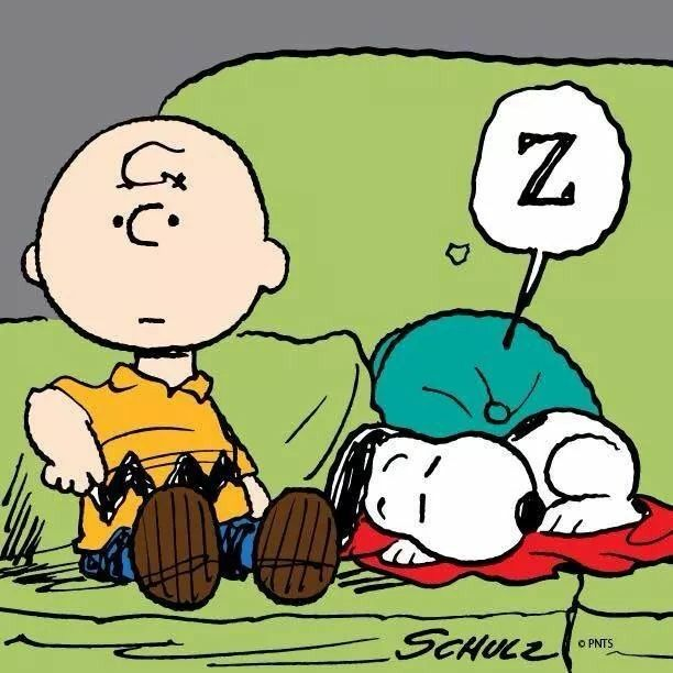 Couch~ Snoopy Brown The Charlie On With Sleeping NnmOv80w