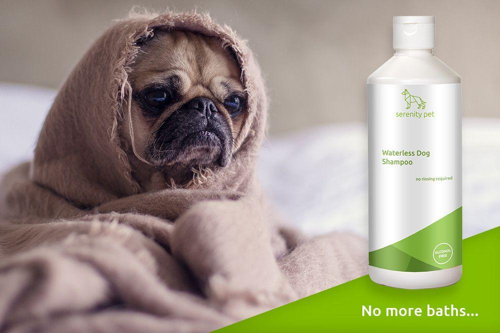 Pin on No Rinse Dog Shampoo