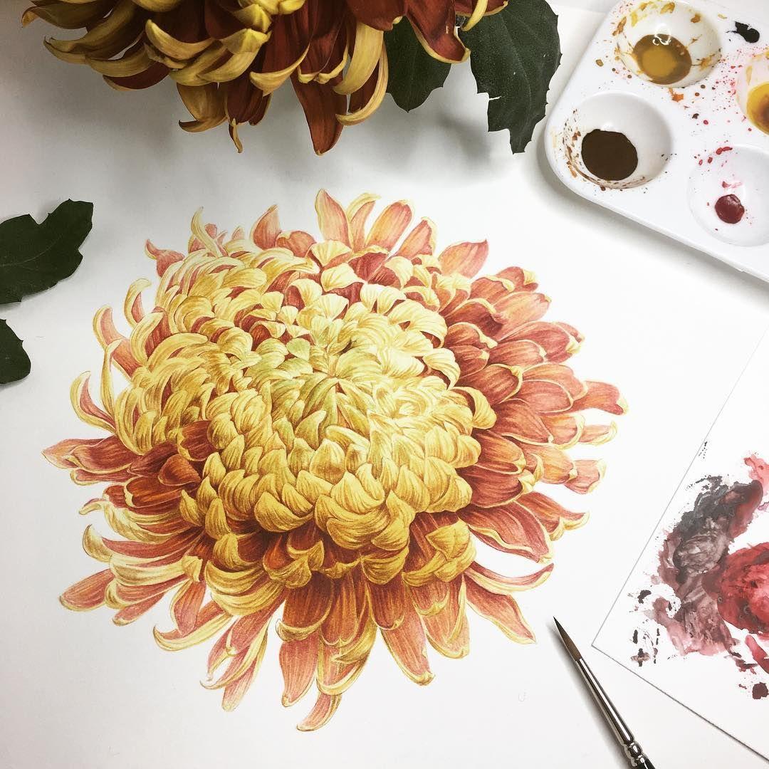 Florencegendreillustration art pinterest illustrations
