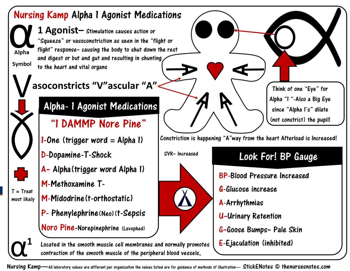 Alpha 1 Agonist Dopamine Levophed And Neo The Squeeze Or Vasoconstriction Medications Nursing