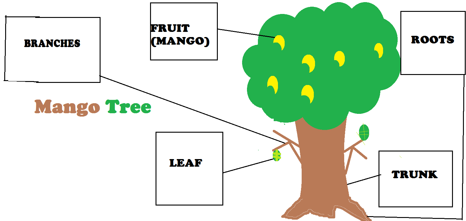 medium resolution of parts of mango tree by gelo buen mango tree plant trees