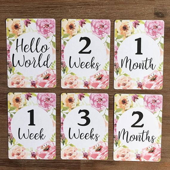 PINK BABY GIRL MILESTONE CARDS MONTHS 1-11 /& 1 YEAR BABY SHOWER