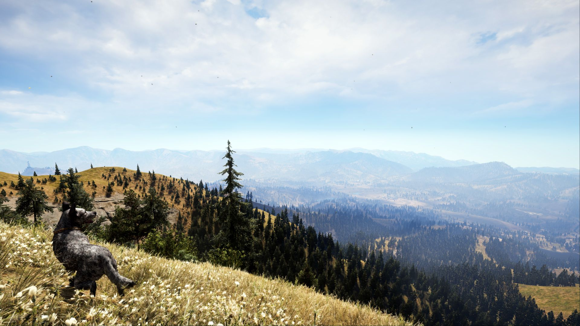 Hiking With My Dog In Hope County Montana Far Cry 5 Far Cry 5 Crying Hiking