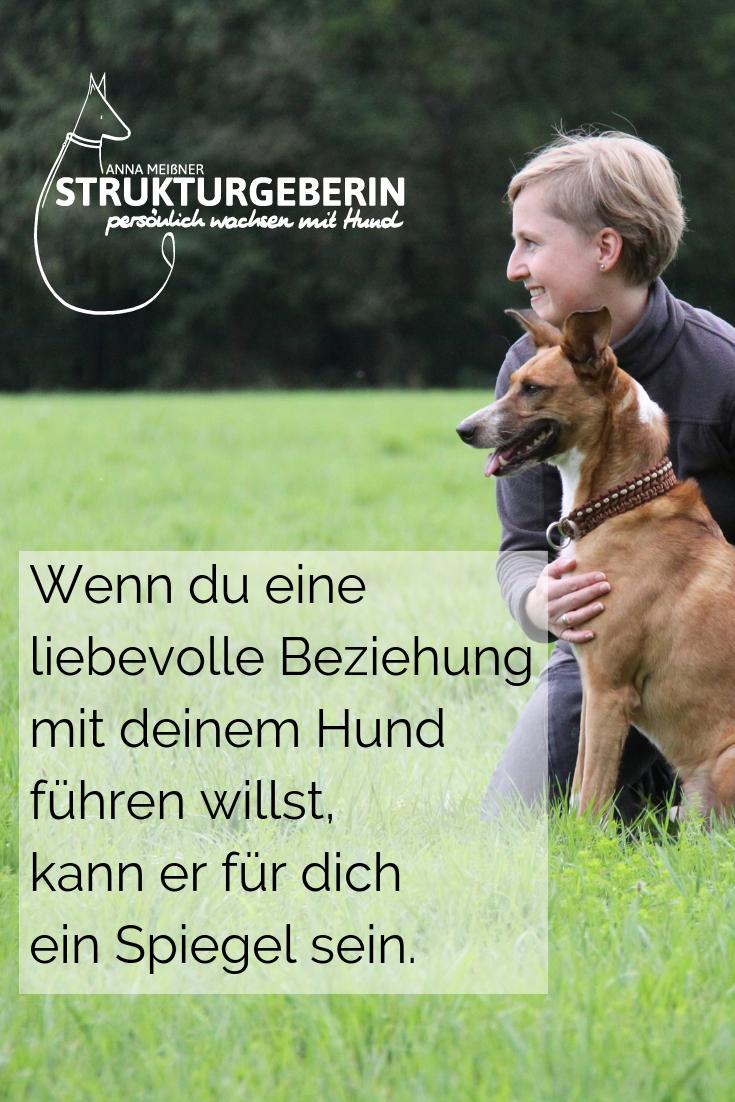 Wenn Du Eine Liebevolle Beziehung Mit Deinem Hund Fuhren Mochtest Kann Er Fur Dich Auch Ein Spiegel Sein Anna Meissner Struk Hunde Tiere Hund Hundetraining