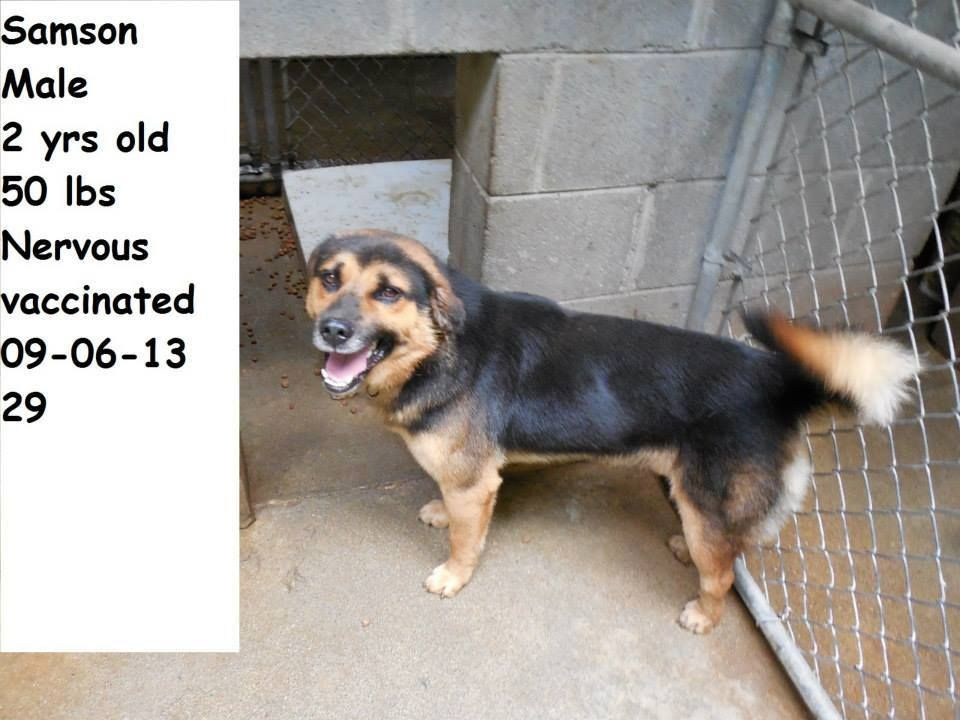 ***SCHEDULED TO DIE 9262013 AT 10A*** HAZARD, KY
