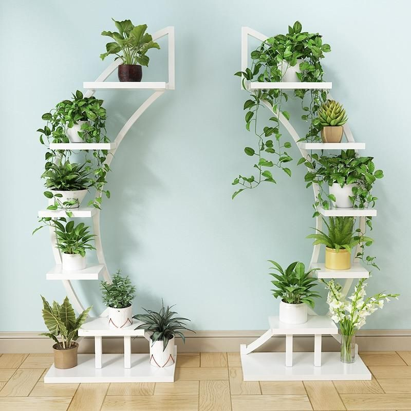 Curved Plant Shelf Plant Decor Indoor House Plants Decor