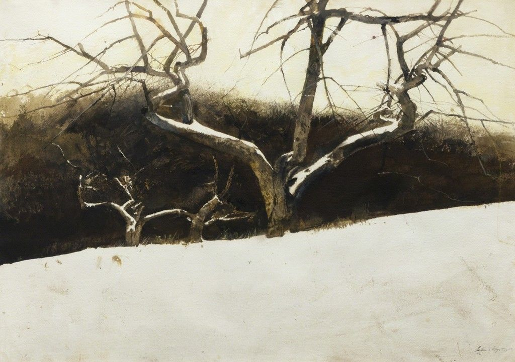 Pin By Ed Hobbins On Landscape Painting Fine Art Andrew Wyeth Andrew Wyeth Paintings Andrew Wyeth Watercolor