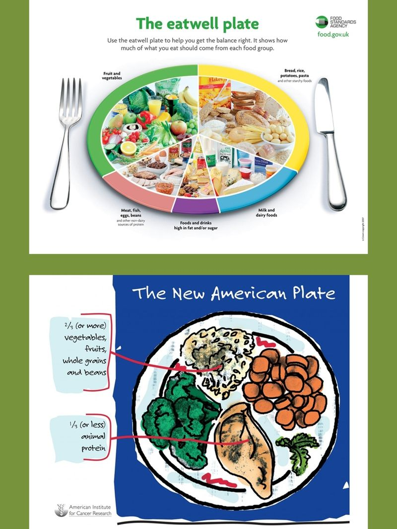 Nutrition And Healthy Eating Charts And Diagrams With Private Label Rights 36 Nutrition And Healthy Eating Charts Diet And Nutrition Nutrition Nutrition Facts