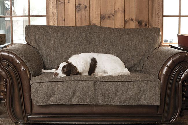 Admirable Just Found This Washable Dog Couch Cover Herringbone Grip Gmtry Best Dining Table And Chair Ideas Images Gmtryco