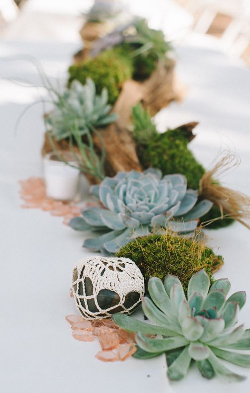 Photo by nathan russell driftwood moss and succulent for Driftwood centerpiece