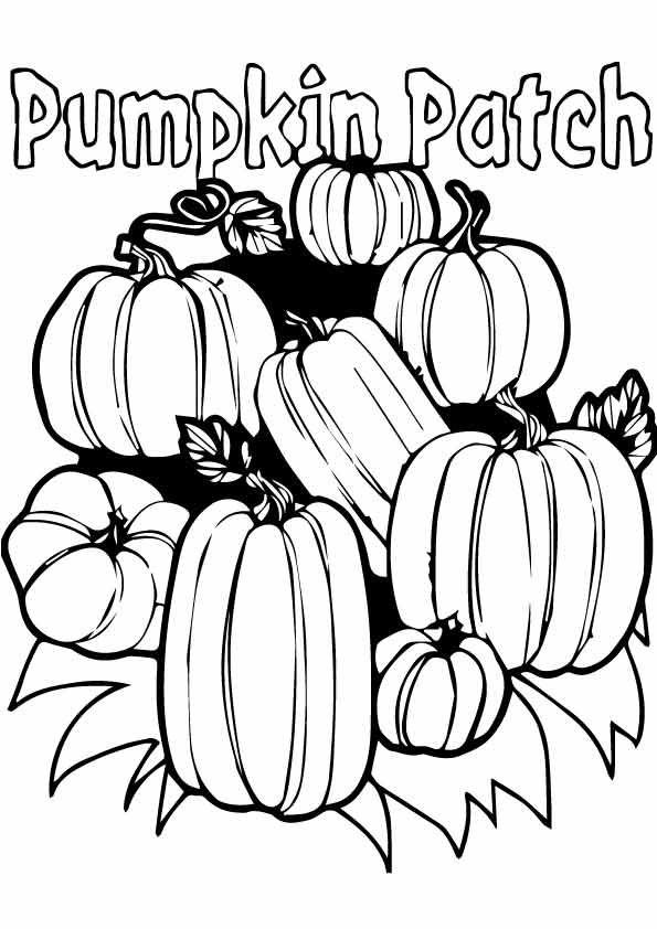 Pumpkin Patch Toll Pumpkin Coloring Sheet Pumpkin