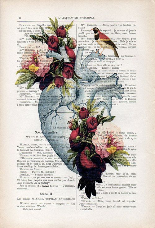 Heart peony Anatomy Botanical Flower vintage drawing book art gothic ...