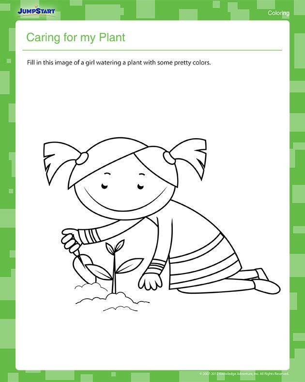 Caring for My Plant – Kindergarten Coloring Worksheet | *♧* Busy ...