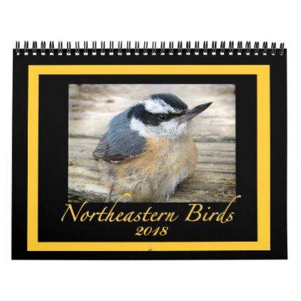 2018 Northeastern Birds Animal Wildlife Calendar Wildlife