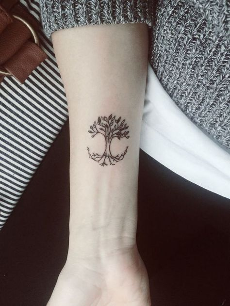 tatouage arbre pin laurier ch ne bouleau olivier tattoos tree tattoo designs. Black Bedroom Furniture Sets. Home Design Ideas