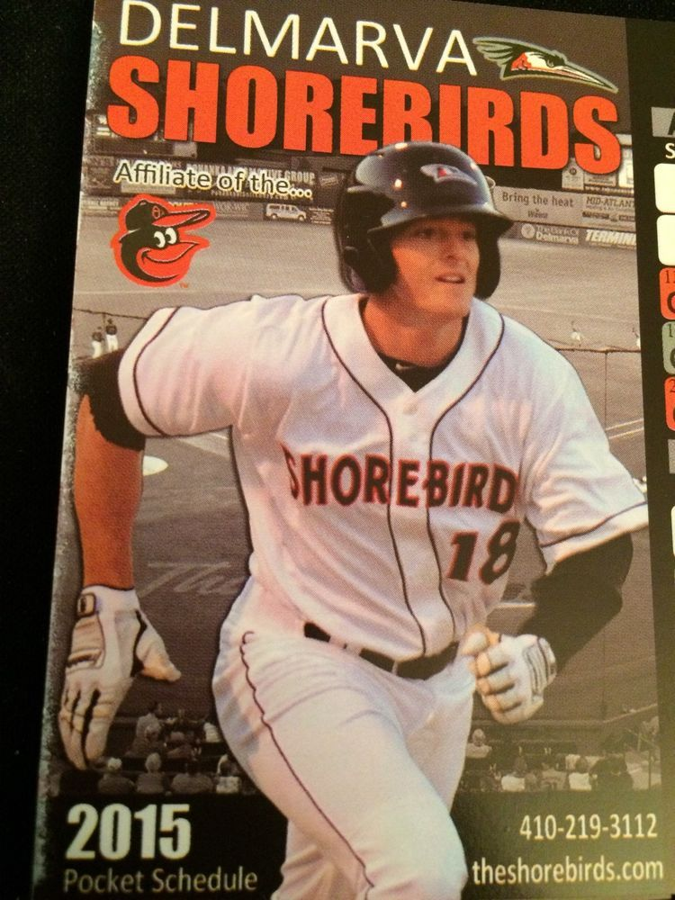Delmarva Shorebirds  2015  Baseball  Pocket  Schedule Orioles Farm Team