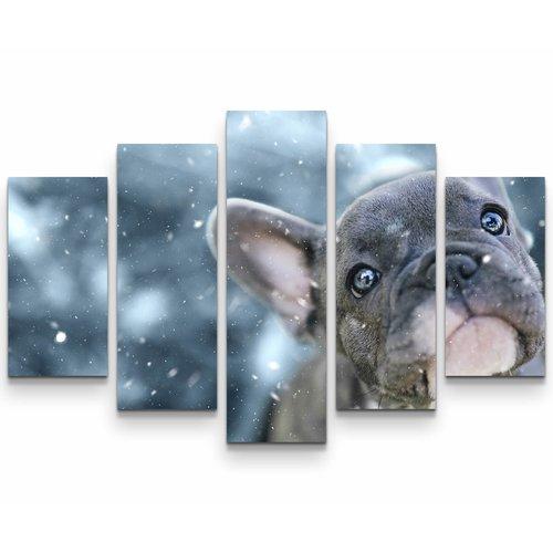 East Urban Home French Bulldog Puppy Photographic Print Multi