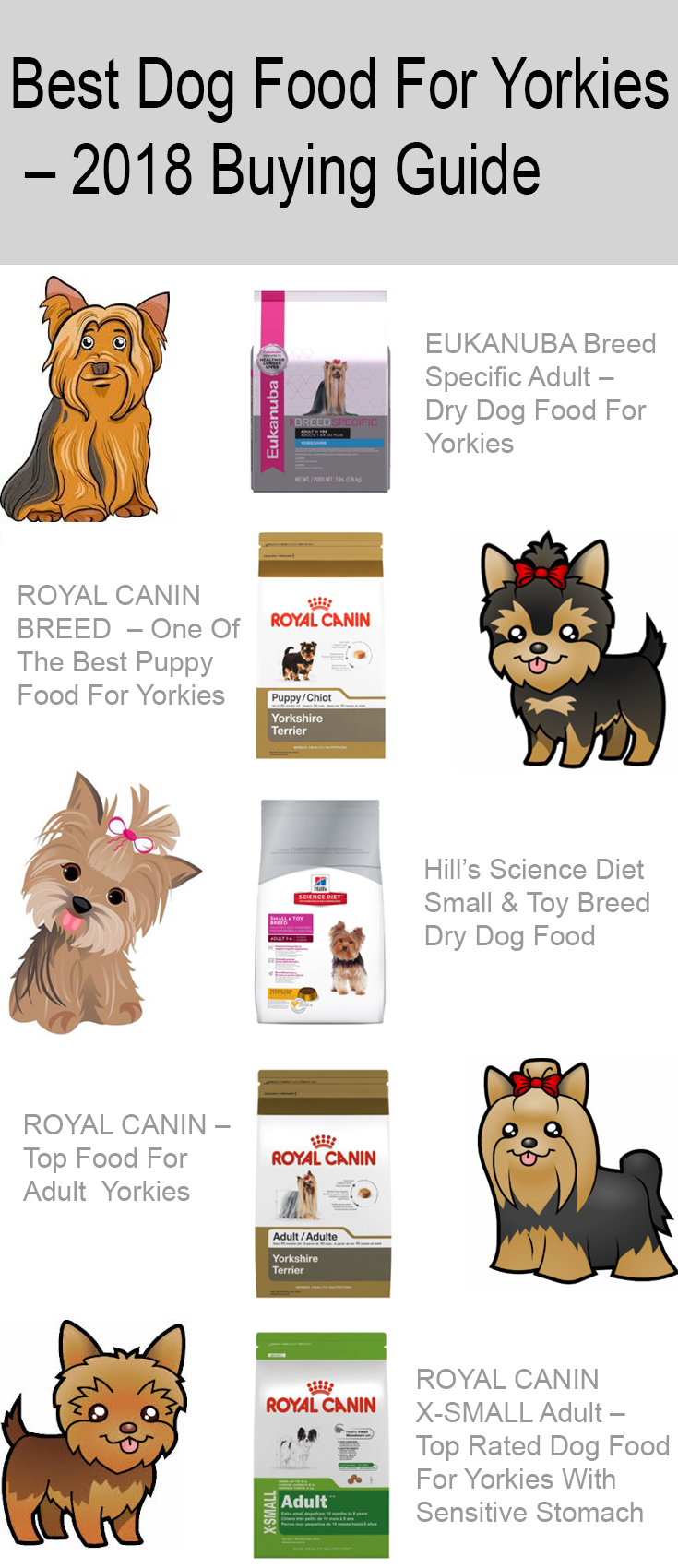 Best Dog Food For Yorkies 2018 Buying Guide Healthy Pawpawlover Dogfood Yorkshire Training Your Dog Dog Training Collar Dog Behavior Training