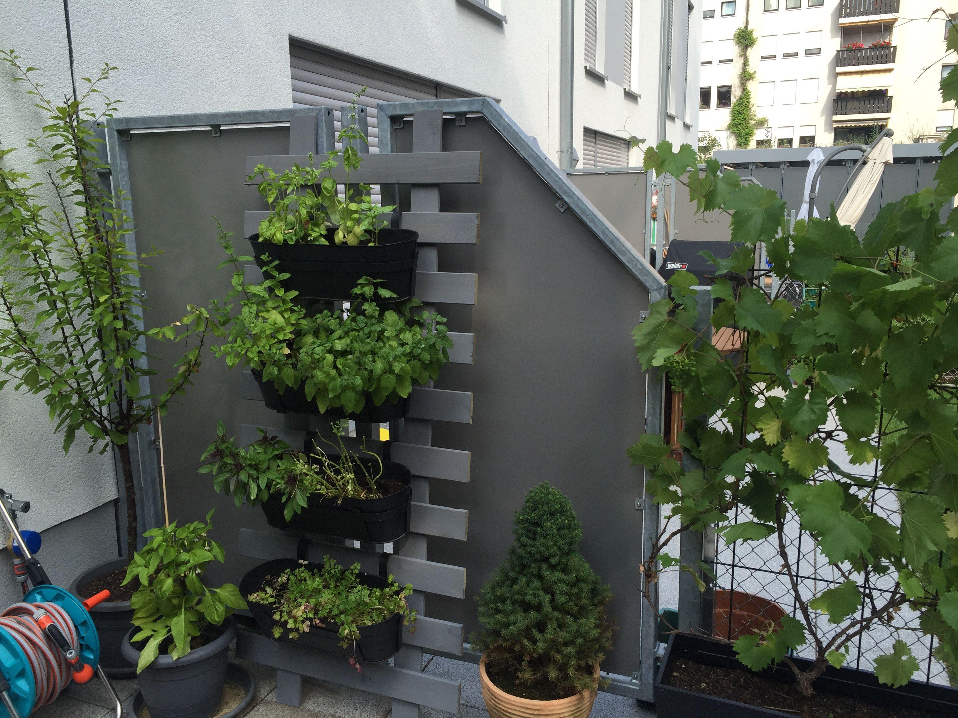Krauter Leiter Einfach Selbstgebaut Sichtschutz Und Hingucker