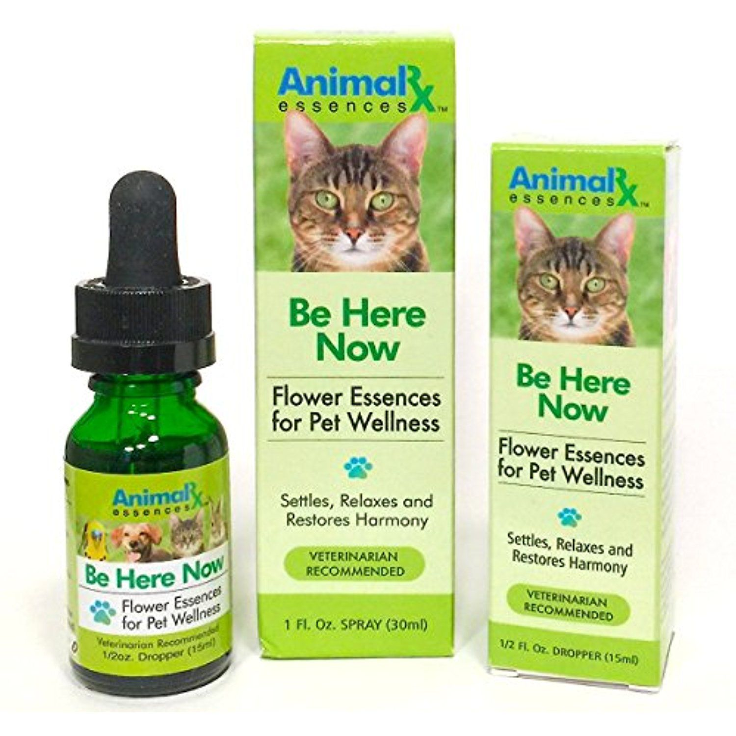 Be Here Now Flower Essences for Companion Animals (Dropper