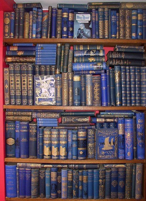 Books Shelves shelves and shelves of blue and gilt booksvery nice. | love