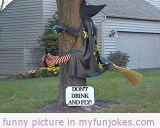 dont drink and fly — top 100 funny jokes  - #funny  #joke  #funnypics  #funnyanimal  #dog  #haha  #cute