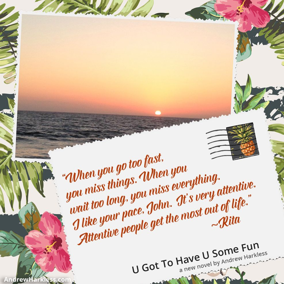 Just made this travel themed #bookpromo for my client's new novel U Got To Have U Some Fun by Andrew Harkless   http://andrewharkless.com/   #lovedesign #travel #postcard #books #greatsummerread