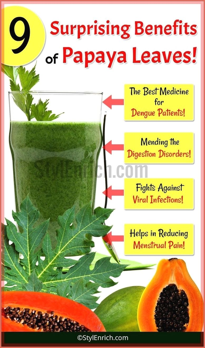 Drink Papaya Leaves Juice To Cure Many Health Prob