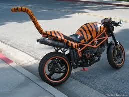 tijger motor
