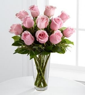 amor rosa 18
