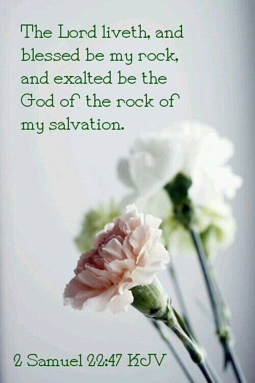 1 samuel 2247 kjv bible scriptures kjv pinterest scriptures new greetings good morning quotes good night wishes and birthday messages are added every week m4hsunfo Images