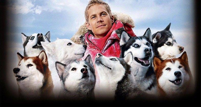 Eight Below (2006) Paul walker movies, Dog films, Paul